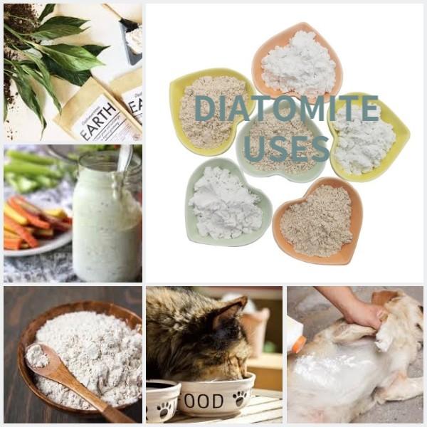 diatomite uses